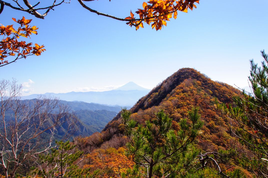 茅ヶ岳・金ヶ岳 ~紅葉を訪ねて リベンジ~