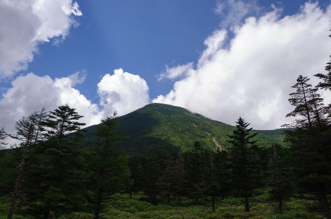 蓼科山 ~盛夏の諏訪富士を訪ねて~