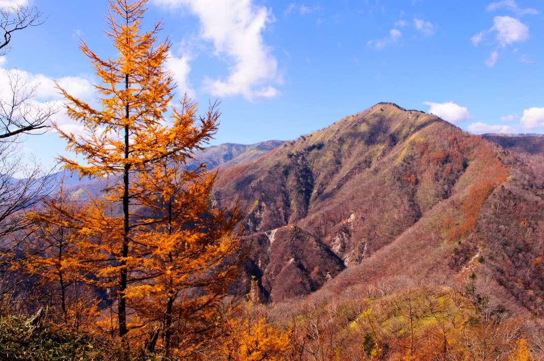 半月山・社山 ~鮮やかな紅葉に彩られた奥日光~